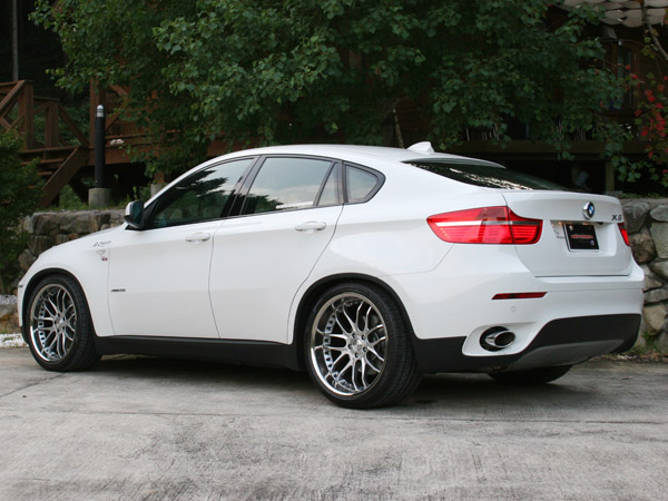 ARU3089 BMW X6 E71(except Adaptive Drive equipped) Struts Only