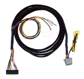 AVS-VWH-10-AA-9SWB Accuair VU4 to AVS 9-switch Switchbox Wire 10ft